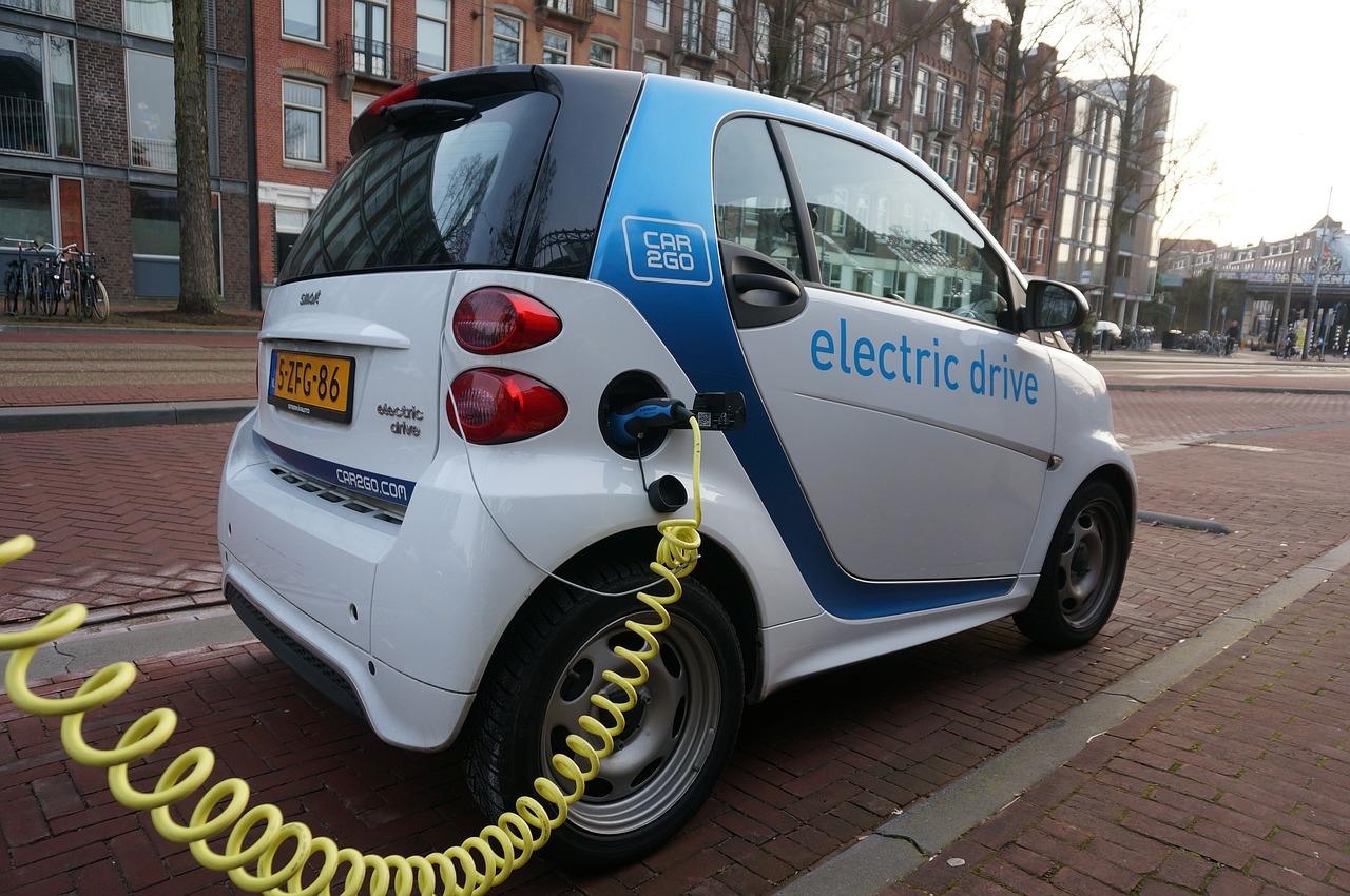 electric car support